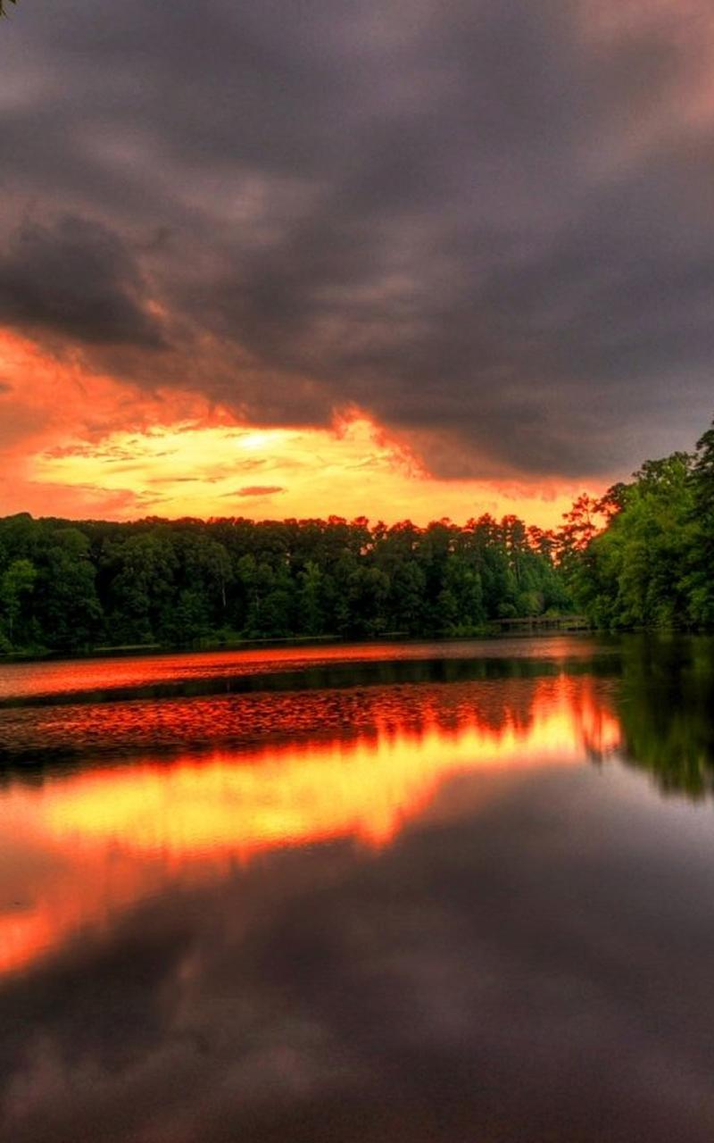River Forest Sunset Nexus 7 Wallpaper