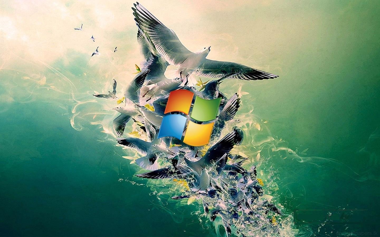 Windows 8 windows 8 wallpapers Windows 8 stunning wallpapers Windows 8 wallpapers Download free Windows 8 wallpapers Download Windows 8 wallpaper 19