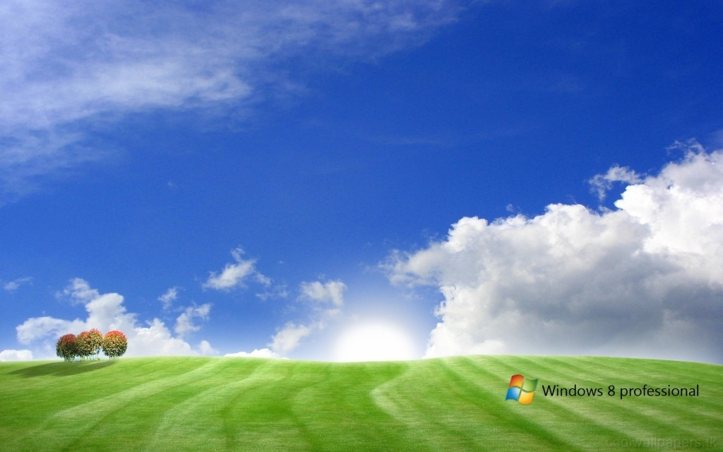 Windows8-Wallpapers-HD (20)