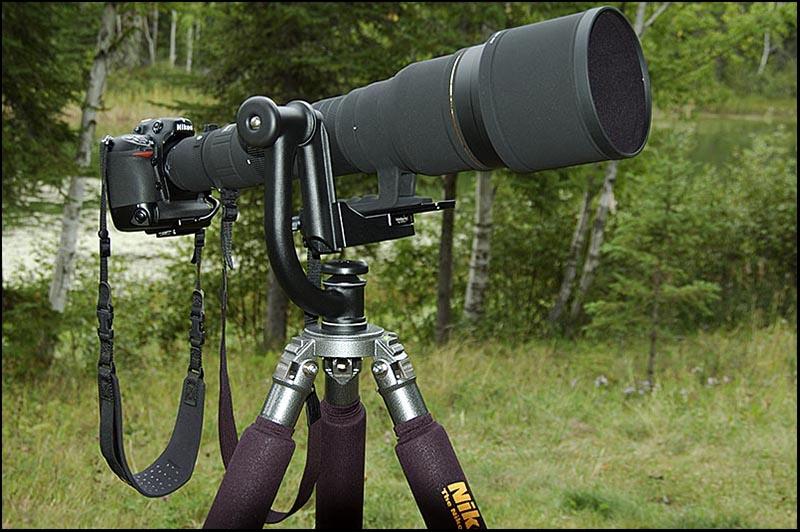 800mm
