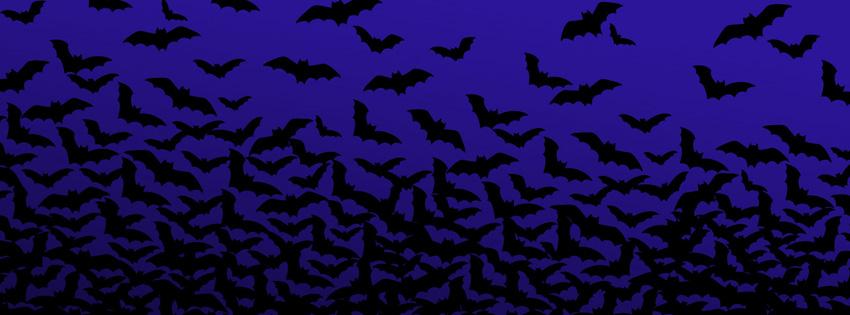 Halloween Walpappers