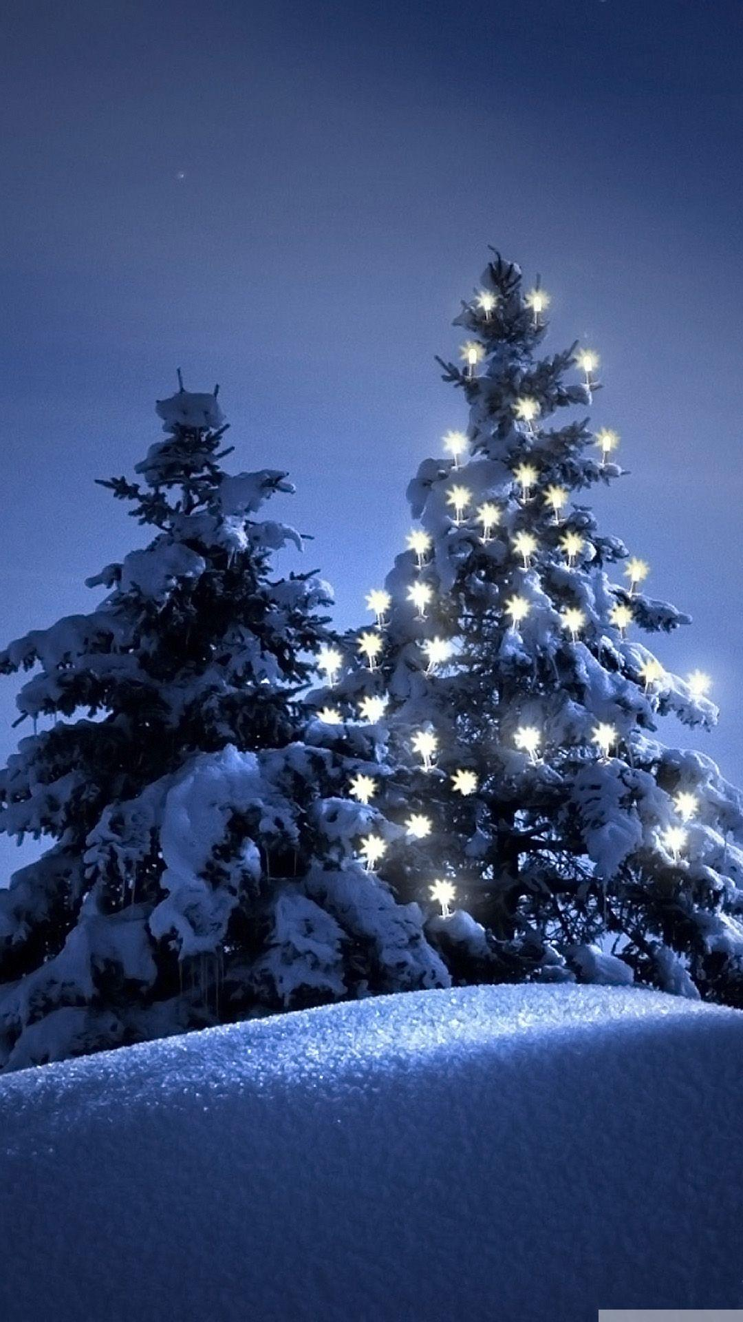 snow christmas tree winter iphone 6 wallpaper axeetech