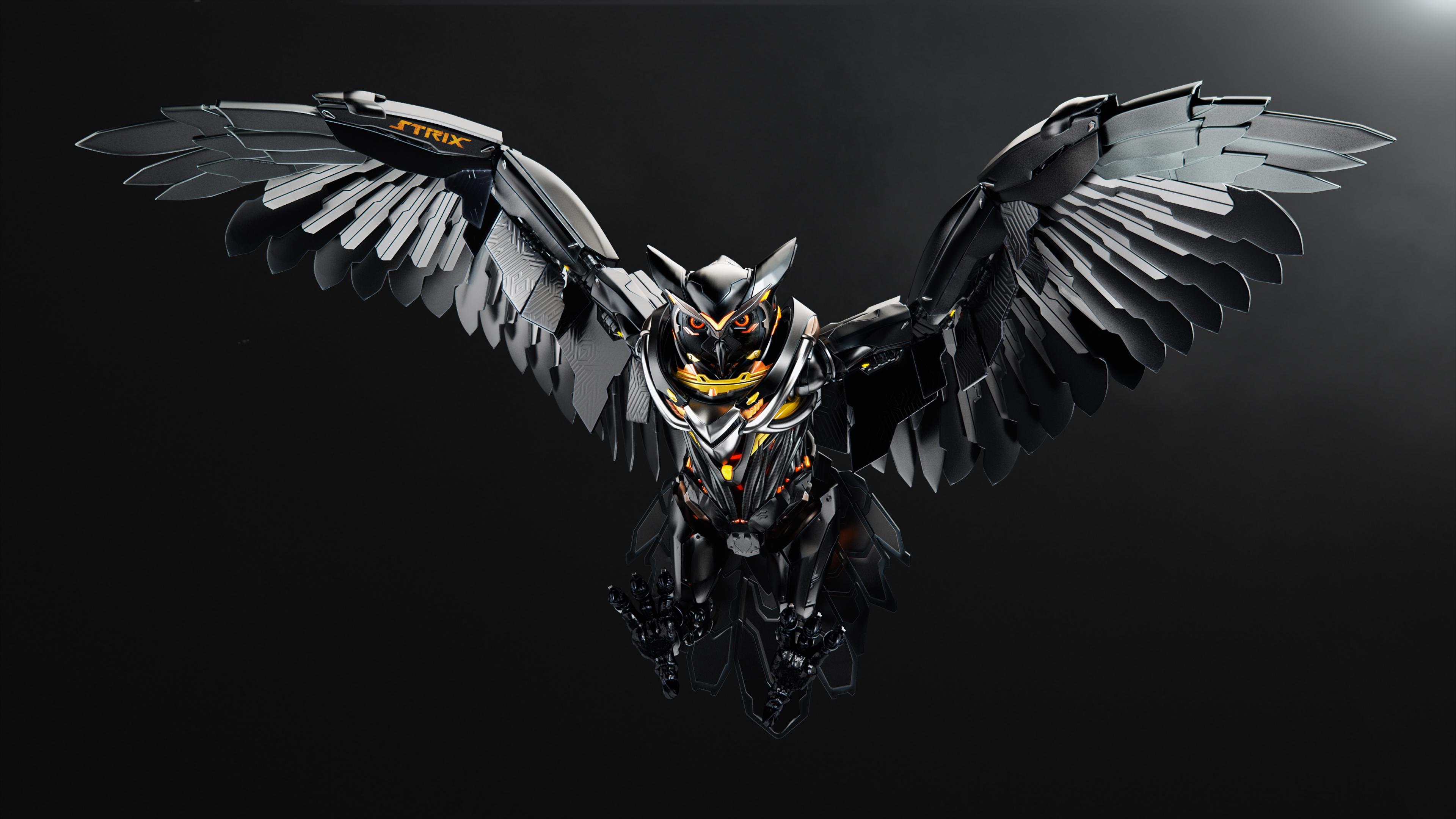 Strix-owl-image