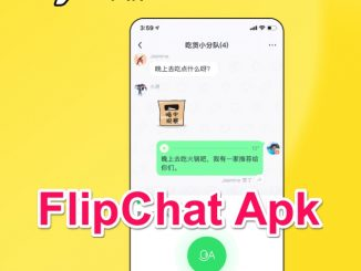 FlipChat Apk by Tiktok Developer Anroid