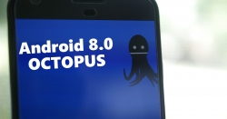 List of All Android devices to get the Android 8.0 Octopus Update.