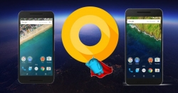 Download and install Android O developers Preview on Google Nexus 5x, Nexus 6P, Google Pixel and Google Pixel XL.