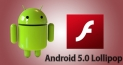 How to download Flash Player for Android 5.0 Lollipop.