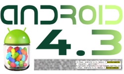 Android 4.3 will be the next Android version?