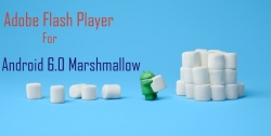 Install Flash Player for Android 6.0 Marshmallow.