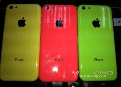 More leaked images of the Low end iPhone pops up, seemed to be no more rumors now.