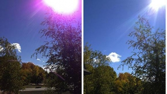 iPhone 5 camera showed Purple spots, What Apple says about it.